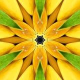 Bright orange mandala, kaleidoscope Royalty Free Stock Photography