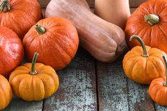 Bright orange pumpkins as symbol of Halloween on blue wooden tab. Le copyspace closeup Stock Photo
