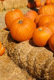 Bright Orange Pumpkins Stacked on Hay Bales Stock Photo