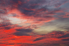 Bright orange, red and yellow colors sunset sky. Royalty Free Stock Images