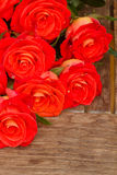 Bright orange  roses on wooden table Stock Photos