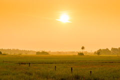 Bright orange sun at sunrise over a field Stock Photo