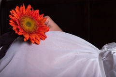 Bright orange sunflower on top of pregnant mom tummy Stock Photography