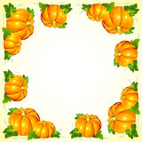 Bright orange vector pumpkins frame Stock Photos