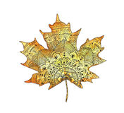 Bright orange watercolor autumn maple leaf in zentangle style. Decorative isolated over white background. Decor for your design in oriental style. Hand drawn Royalty Free Stock Photos