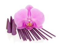 Bright orchid, aromatic sticks and the cones Stock Photography