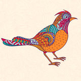 Bright ornamental bird Stock Photos