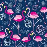 Bright pattern flamingos Royalty Free Stock Image