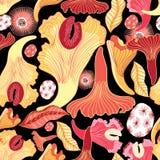Bright pattern of mushrooms Royalty Free Stock Photos