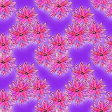 Bright pattern with pink flowers Stock Photography