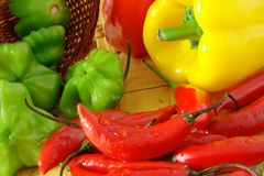 Bright Peppers. Composition with red, yellow and green peppers Royalty Free Stock Images