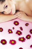 Bright picture of lovely girl with flower Royalty Free Stock Photography