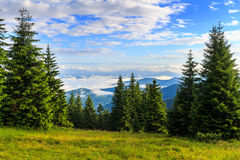 Bright, picturesque Carpathian mountains landscape in morning, Ukraine, Europe. Royalty Free Stock Images
