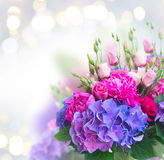 Bright pink and blue flowers Royalty Free Stock Images