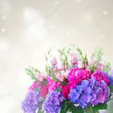 Bright pink and blue flowers Royalty Free Stock Photo