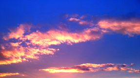 Bright pink clouds. Serenely swim across blue sky Stock Image