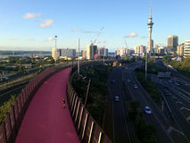 Bright pink cycleway in Auckland New Zealand Royalty Free Stock Image