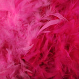 Bright pink feather boas Stock Image