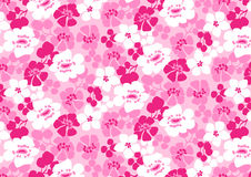 Bright pink flowers pattern. Vector illustration of pink floral repeat pattern Stock Images
