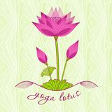 Bright pink lotus flower with buds Royalty Free Stock Photos