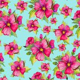 Bright pink malva flowers with green buds and leaves on light blue background. Seamless floral pattern. Watercolor painting. Bright pink malva flowers with Stock Photo