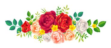 Bright pink and red peony flowers vector decorative element on white background Stock Photos
