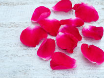 Bright pink rose petals on the white wooden board Stock Photography