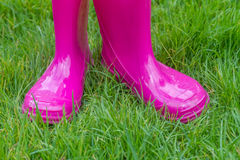 Bright pink rubber boots Stock Image