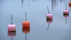 Bright plastic buoys in lead-gray water of the Baltic Sea. Late fall on the coast. stock video