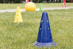 Bright plastic sports cones on the green grass outdoors to train the children`s team. royalty free stock photography