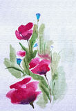 Bright poppies in field. Summer floral watercolor Royalty Free Stock Image