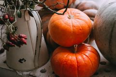 Bright pumpkins stacked near a stone wall royalty free stock photo