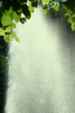Bright Rain. Shot of spray from a fountain from underneath a tree Stock Photography