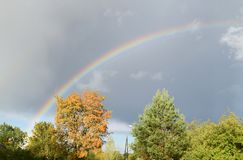 Bright rainbow over trees at small city. royalty free stock images