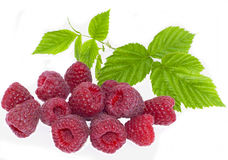 Bright raspberry Stock Photography
