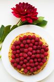 Bright raspberry cake on a plate. Bright raspberry cake with red flowers lying on a plate Royalty Free Stock Photography