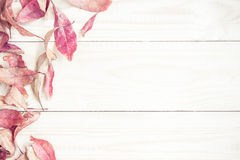 Bright red autumn leaves on the wooden background. Royalty Free Stock Images