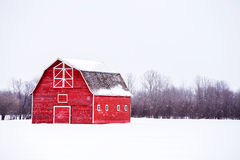 Bright red barn in winter landscape Stock Images
