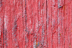 Bright red board wall with small mold growing Royalty Free Stock Image