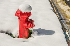 Bright Red Fire Hydrant Royalty Free Stock Image