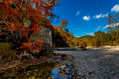Bright Red Foliage of Lost Maples State Park, Texas Stock Images