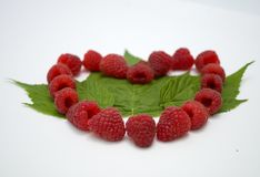 Bright red fresh raspberries, from a family orchard. The raspberry type is Polana. In Serbia Stock Photos