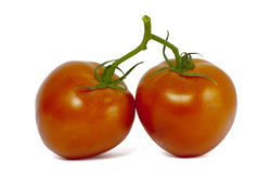 Bright red fresh tomatoes Stock Photo