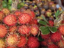 Rambutan is sold in the local Asian market. stock image