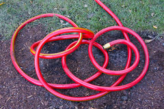 Bright Red Garden Hose Stock Photos