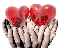 Bright Red Glass Hearts In Hands Royalty Free Stock Photography