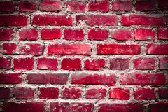 Bright red grunge brickwall Stock Photography