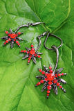 Bright red jewelry on fresh green leave Royalty Free Stock Photography