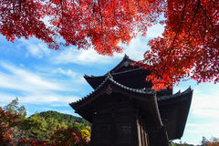 Bright red maple leaves contrast with an ancient temple in Kyoto, Japan Royalty Free Stock Images