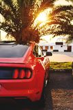 Bright REd mustang near the seaside royalty free stock photography